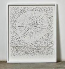 Bianca Severijns, paper artist, earth skins