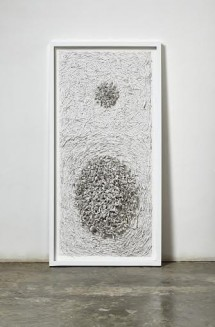 Bianca Severijns, paper artist, earth skins serie